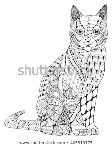 Estilizado cabeza gato dibujado a mano encaje limpio Foto stock © Natalia_1947