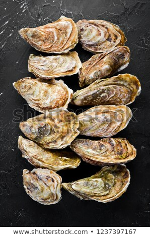Fresh seafood - raw natural closed oysters on a stone white background with copy space. Top view Stock photo © artjazz