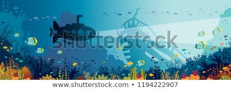 Sziluett tengeralattjáró csónak halfajok vektor szett Stock fotó © Andrei_