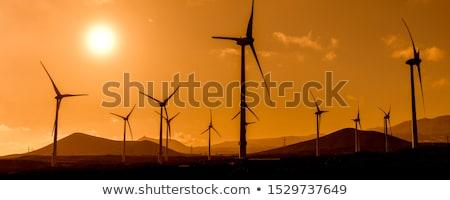 Power Generation Eolic Wind Turbines Field In Spain Stock photo © diego_cervo