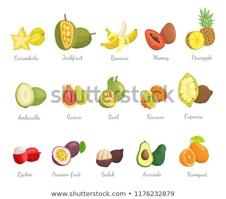 Lychee and Carambola Avocado Set Names Vector Stock photo © robuart