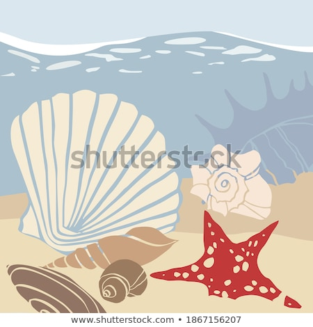 Hot Summer and Sea Adventure, Ocean Bottom, Diving Stock photo © robuart