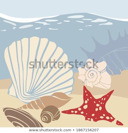 Czerwonak · brzegu · stylizowany · ilustracja · skrzydełka · niebo - zdjęcia stock © robuart