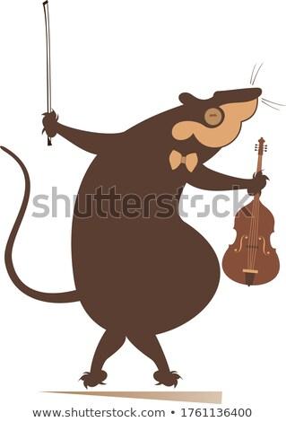 Rajz patkány egér hegedűművész illusztráció izolált Stock fotó © tiKkraf69