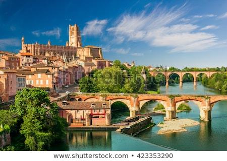 мнение собора Франция дворец реке дерево Сток-фото © borisb17