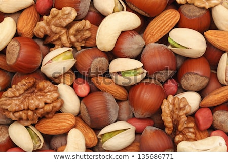 mixed nuts with shelled walnut stock photo © klsbear
