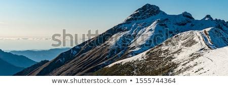 山 雪 山 はげ 木 カバー ストックフォト © Ansonstock