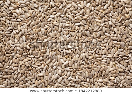 Nutritious Sunflower Seeds in the Hull Stock photo © klsbear