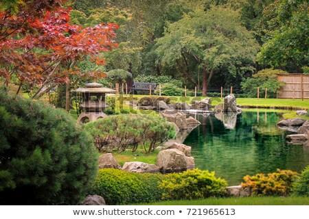 Kyoto Garden in Holland Park, London Stock photo © fazon1