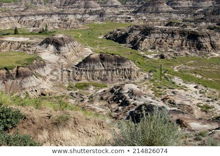 Horseshoe Canyon Alberta Canada Stock photo © pictureguy