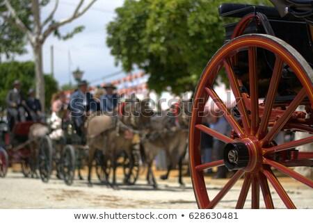 Feria of Abril. Stock photo © asturianu