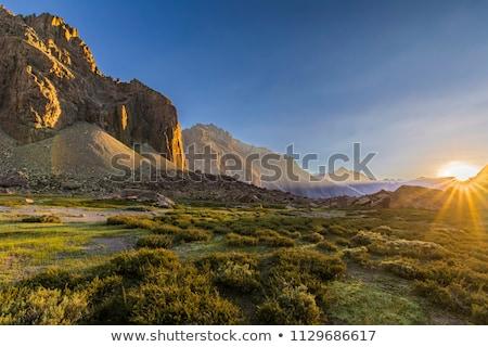 winter · schemering · bergen · adelaar · nest · rock - stockfoto © kwest