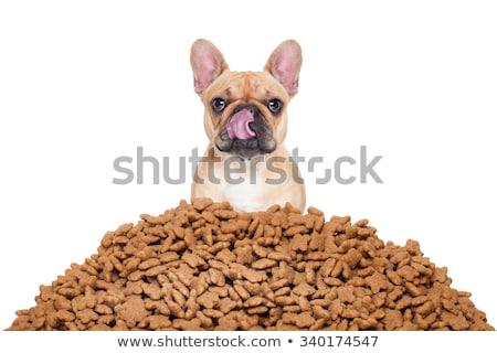 Kutyaeledel kutya csemegék fehér csont bot Stock fotó © FOKA
