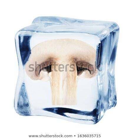 Jégkocka champignon izolált fehér absztrakt üveg Stock fotó © Givaga