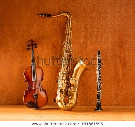 akusztikus · duda · kéz · tart · hagyományos · izolált - stock fotó © lunamarina