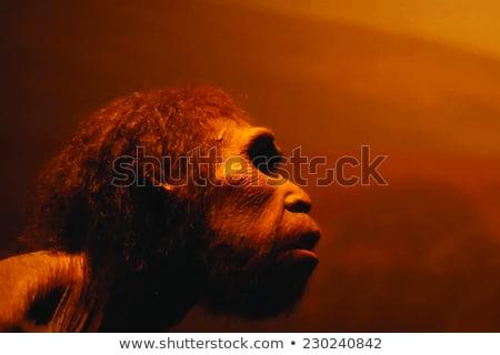 menselijke · evolutie · computer · gegenereerde · 3d · illustration · terreur - stockfoto © aliencat