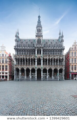 Roi huis plaats Brussel stad nacht Stockfoto © chrisdorney