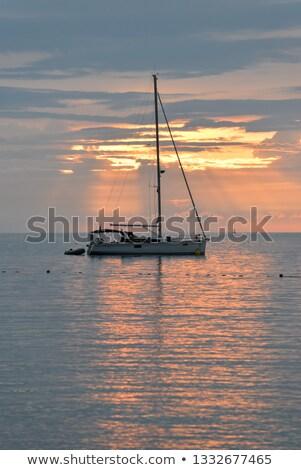yachts and boats near rovinj at sunset croatia stock photo © anshar
