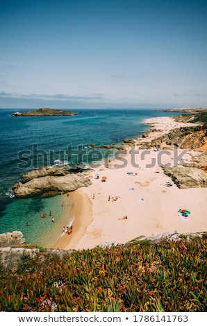 zuiden · kust · madeira · eiland · Portugal · hemel - stockfoto © inaquim