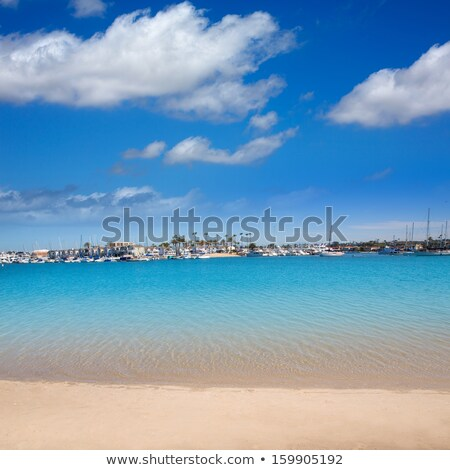 plage · Californie · palmiers · sport · nature · mer - photo stock © lunamarina