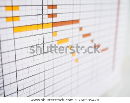 Trabalhar programar negócio organização planejamento relógio Foto stock © Lightsource