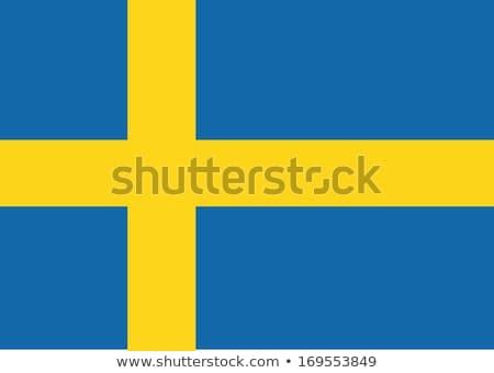 Svezia bandiera idea design illustrazione Foto d'archivio © kiddaikiddee