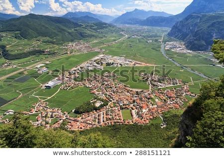 alpino · valle · Italia · nubi · verde · montagna - foto d'archivio © antonio-s