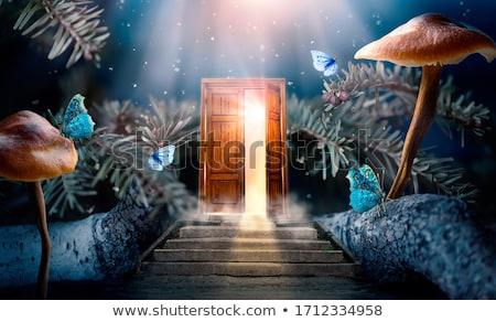 merdiven · büyü · kapılar · çim · duvar - stok fotoğraf © cherezoff