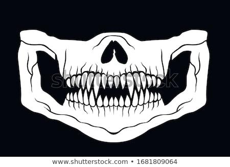 kafatası · maske · hat · çalışmak · vektör · dizayn - stok fotoğraf © 13UG13th