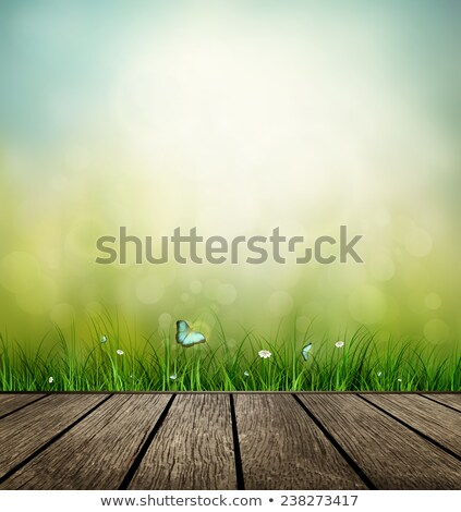 Gras bloem vlinder zomer voorjaar Stockfoto © olgaaltunina