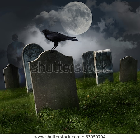 old gravestones in a cemetery stock photo © speedfighter