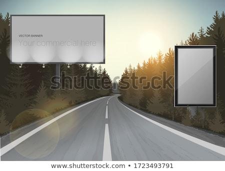 Tracks in a coniferous forest Stock photo © olandsfokus