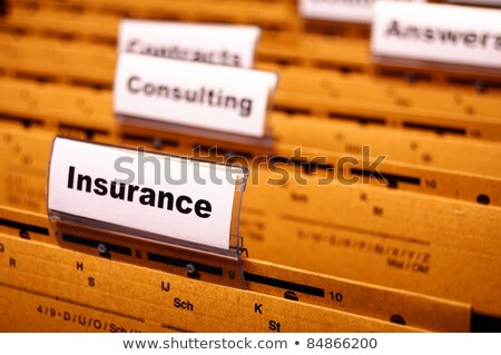 Insurance Concept with Word on Folder. Stock photo © tashatuvango
