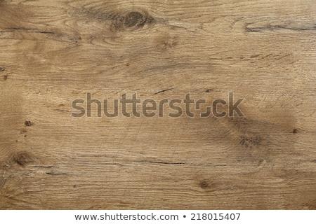 wood texture on a door Stock photo © taviphoto