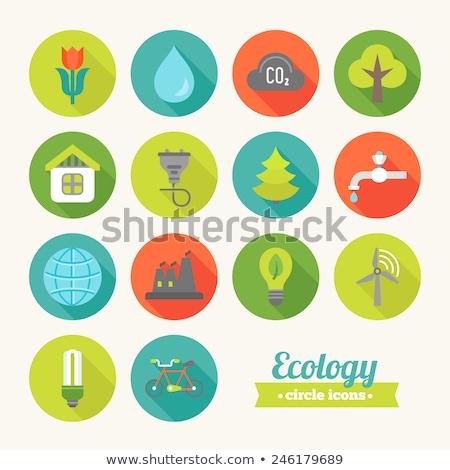 ícone · círculo · colorido · projeto · árvore - foto stock © anna_leni