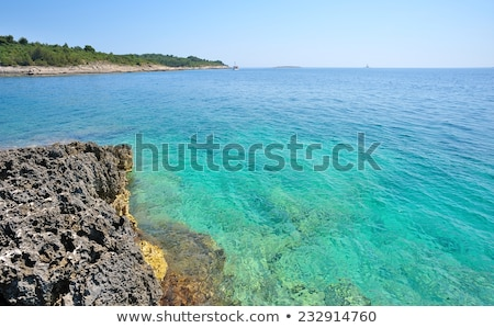 Wild beach in Pula, Croatia Stock photo © master1305