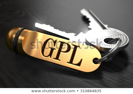 gpl   bunch of keys with text on golden keychain stock photo © tashatuvango