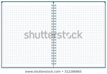 Füzet nyitva notebook kockás illusztráció vektor Stock fotó © orensila