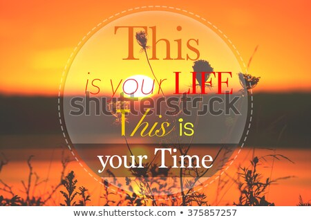 this is your life this is your time motivational quote stock photo © tashatuvango