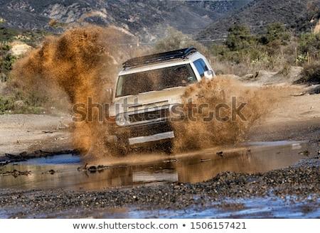 Driving Through California Stock photo © Bigalbaloo