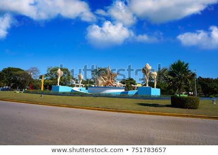 Cancun tengeri csillag szökőkút tenger kagylók fű Stock fotó © lunamarina