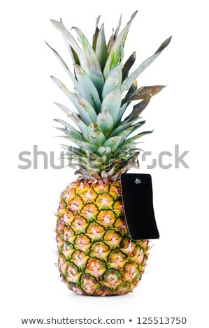 ripe pineapple with empty price tag isolated on black stock photo © frescomovie