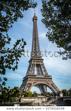 skyline of Paris from la tour Eiffel Stock photo © meinzahn