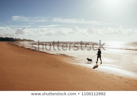 Nyári vakáció nő kutya séta tengerpart boldog Stock fotó © vlad_star
