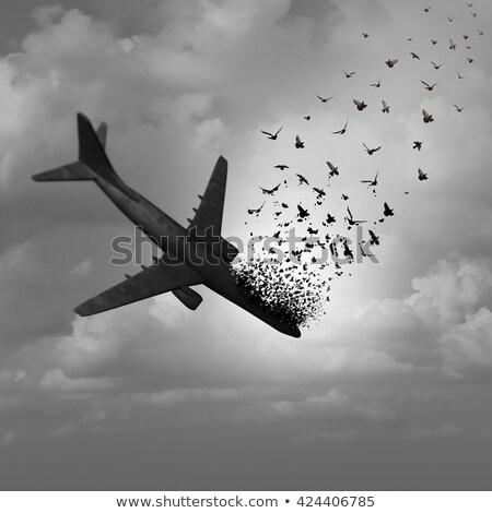 平面 行方不明 飛行 飛行機 下がり ストックフォト © Lightsource
