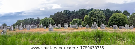 Carnac stones in Brittany Stock photo © prill