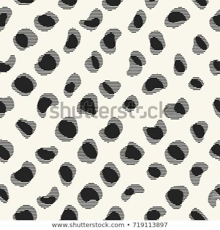 Vector naadloos zwart wit vervormd patroon Stockfoto © CreatorsClub