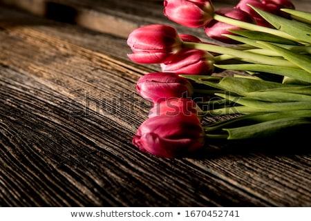 piros · tulipánok · fa · asztal · váza · kék · ünnep - stock fotó © Lana_M