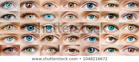 Ophthalmology background, anatomy of the eye and beautiful blue  Stock photo © Tefi