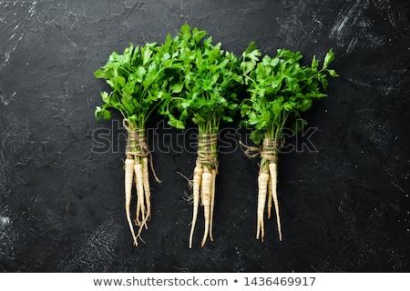 петрушка корней белый Постоянный группа Сток-фото © Digifoodstock